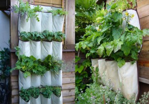 Create handy vertical Planters from your old shoe racks