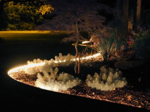 Use Rope Lighting to highlight your Garden