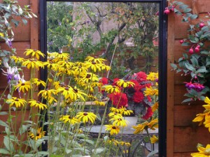 Using Mirrors to to full effect in your Garden