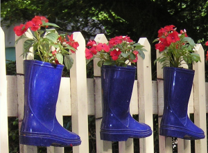 welly planters