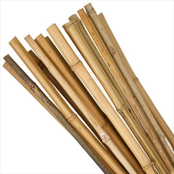 Bamboo Canes 3ft (Pack of 500)