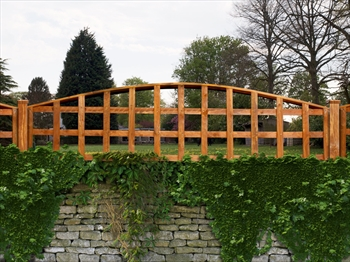 "Arched Trellis (6' x 1' to 1' 6"")"