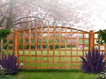 "Arched Trellis (6' x 4' to 4' 6"")"
