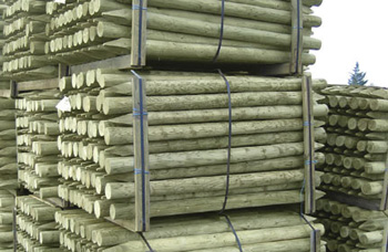 125-150mm Peeled & Pointed Cundy Poles
