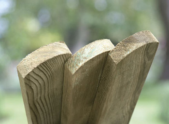 Planed, Round Top Picket Boards 600mm