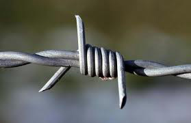 200 Metre Roll Barbed Wire - High Tensile