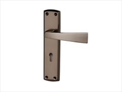 Intelligent - Ritz Door Handle On Backplate (Black Nickel / Brushed Nickel)