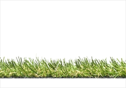 Florence 2019 Artificial Grass (20mm)