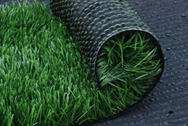 Artificial Grass / Lawn